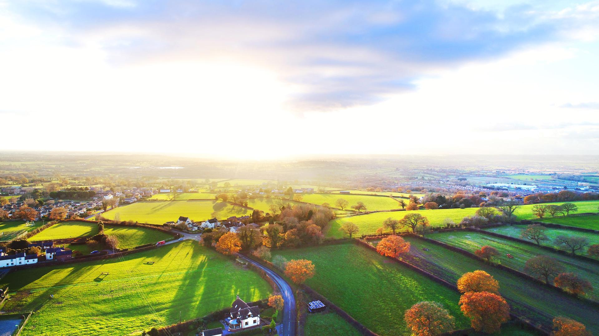 Alvanley Aerial