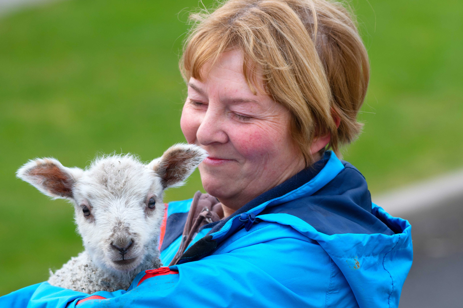 Sue brings a little visitor to Chester's Croft